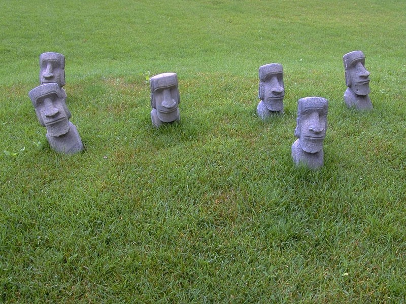 the lesson of easter island essay